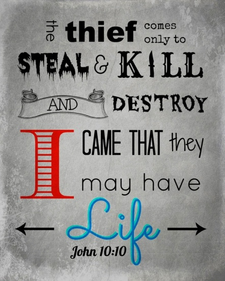 Image result for bible John 10:10